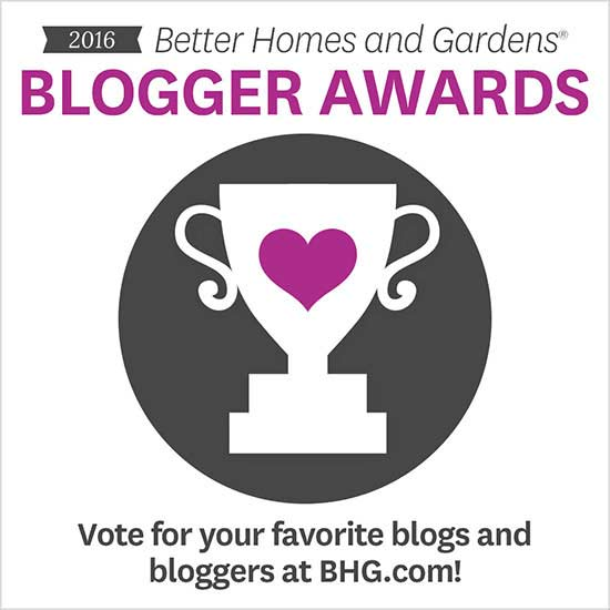 blogger awards 2016