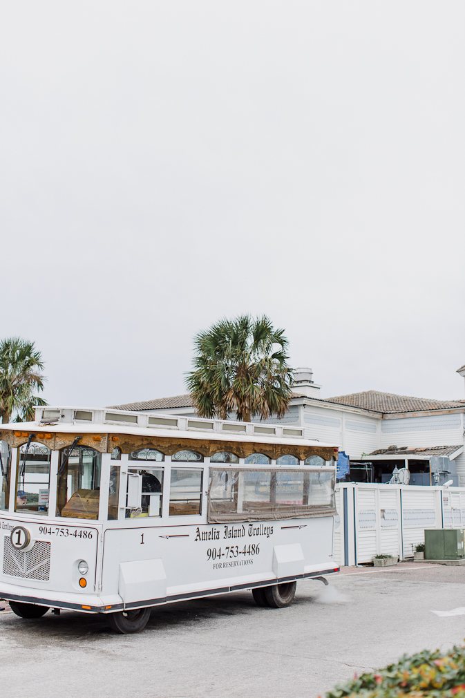Amelia island, Ritz Carlton, Travel