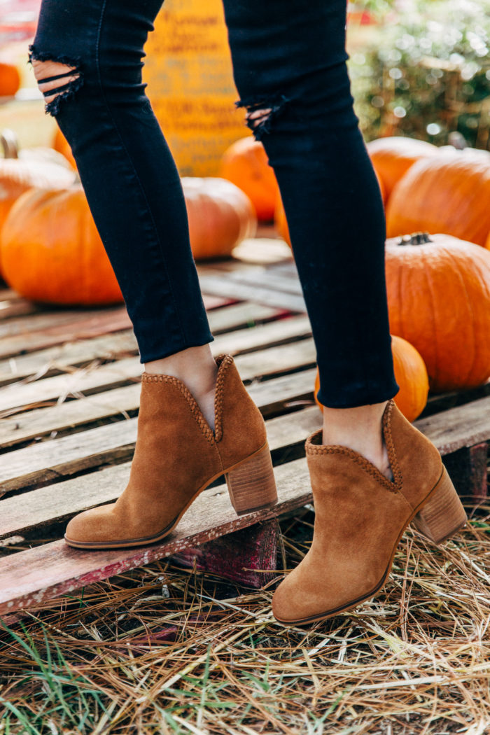 things to do during the fall, pumpkin patch